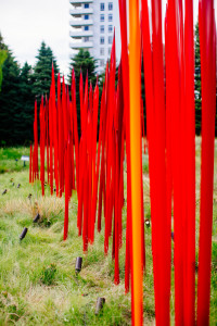 Chihuly Glass at the Denver  Botanic Gardens in 2014. Photo credit Urban Safari Photography